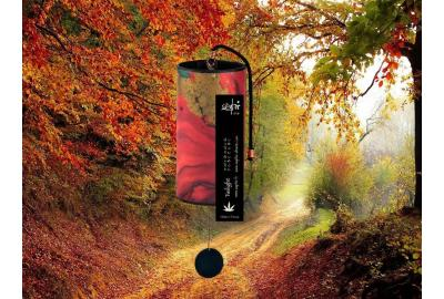 Zaphir Twilight  Autumn or Fall
